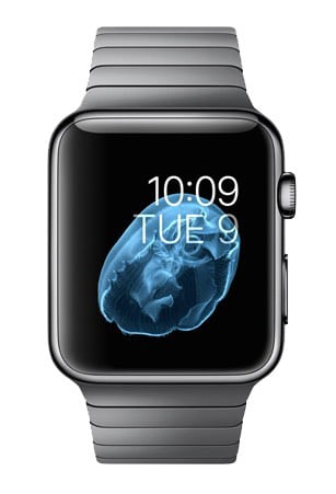Ремонт apple watch в твери